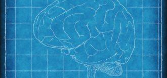 イメージ|脳
