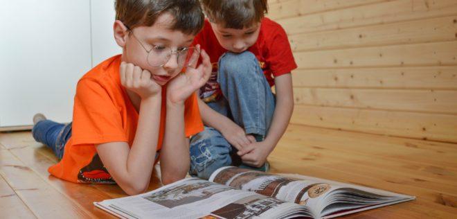 子どもの家庭での第二言語習得に影響する内的・外的要因