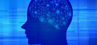 イメージ画像|バイリンガルの脳は言語接触によって可塑性が生じる