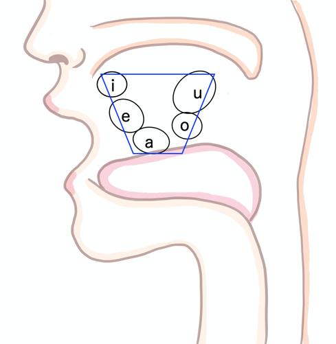 イメージ画像|日本語の5母音の相対的位置