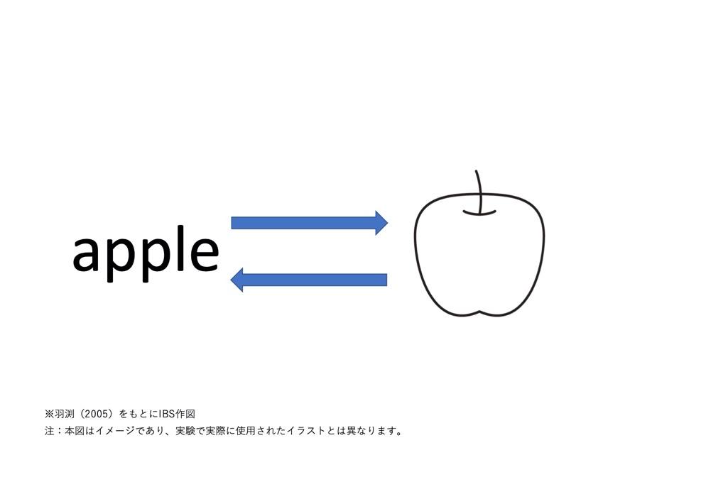 英語によるリンゴの認知のイメージ